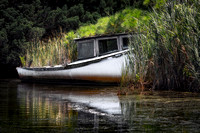 An abandoned boat in Raccoon Bay